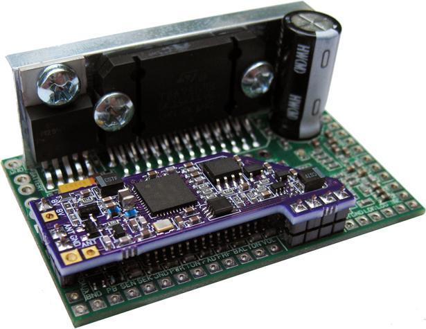 FMR2.6: FMR-DRD1